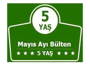 5-yas-anaokulu-plani